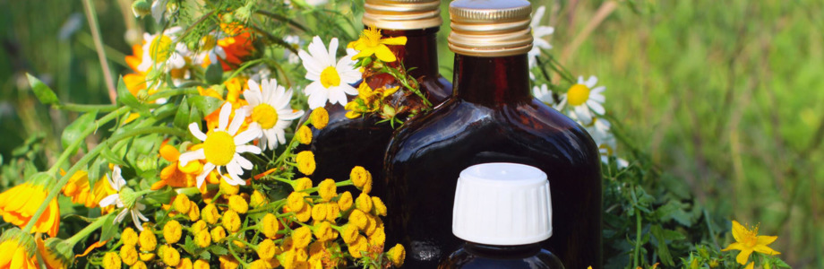 Stoffwechsel, Öl-Eiweiss-Kost, Budwig, Blutanalyse..